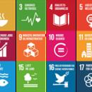 FN 17 verdensmaal